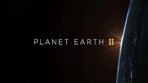 Planet Earth II: BBC Earth & BBC One